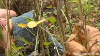 Una scena registrata nella foresta